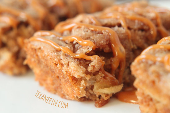 Apple Cake Bars – super quick and easy to make and 100% whole grain! | texanerin.com