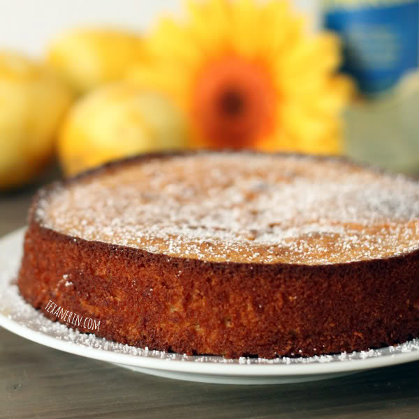 Italian Lemon Almond Cake (Torta Caprese Bianca) - made with almond flour, this light and delicious cake is grain-free! | texanerin.com
