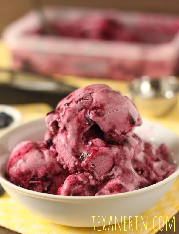 Healthier Blueberry Frozen Yogurt | texanerin.com