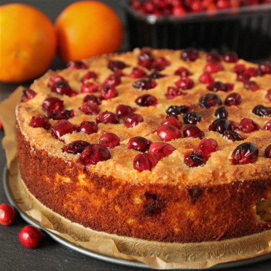 Grain- and Gluten-free Cranberry Orange Cake | texanerin.com