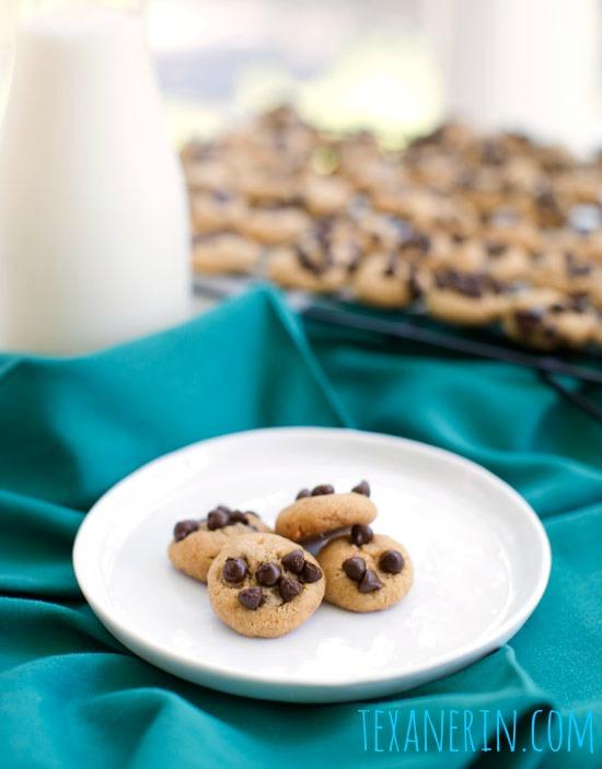 Healthier Sundaes (Whole Grain Peanut Butter Cookies + Peanut Butter Banana Ice Cream) | texanerin.com