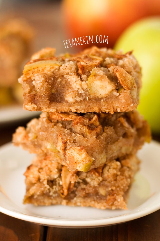 Gluten-free apple pie bars | texanerin.com