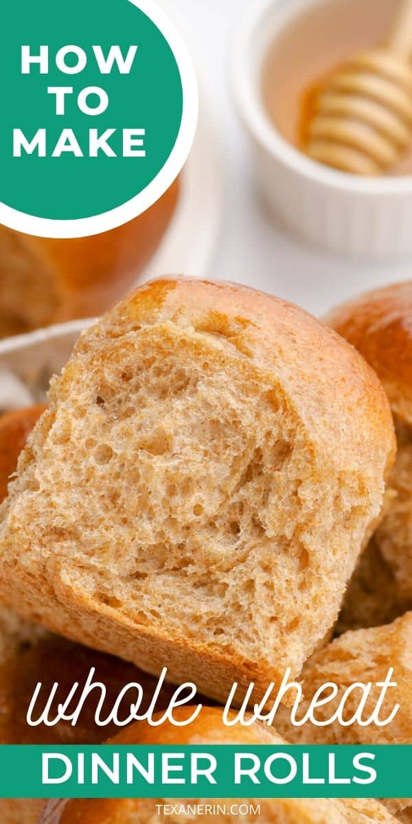 These whole wheat rolls are fluffy, stay soft for days, and make excellent sandwiches! A must-have for Thanksgiving and Christmas. With a dairy-free option.