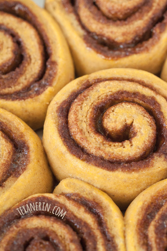 Whole Wheat Pumpkin Cinnamon Buns – great with either caramel sauce or maple cream cheese frosting!