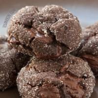 chocolate-gingerbread-cookies-FI