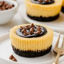 Baileys Cheesecakes with Easy Homemade Chocolate Cookie Crust