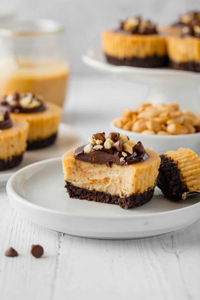 These mini peanut butter cheesecakes are made a little healthier with natural peanut butter and honey and the crusts can be made with gluten-free, whole wheat or with all-purpose flours!