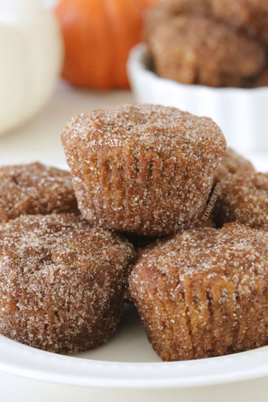 Gluten-free Pumpkin Donuts {dairy-free, grain-free, and gluten-free}