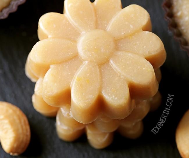 Paleo Lemon Fudge (vegan, gluten-free, grain-free, dairy-free)