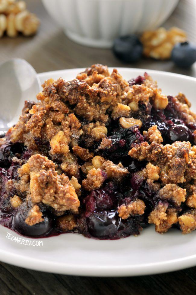 Paleo Blueberry Crisp (vegan, grain-free, gluten-free, dairy-free)
