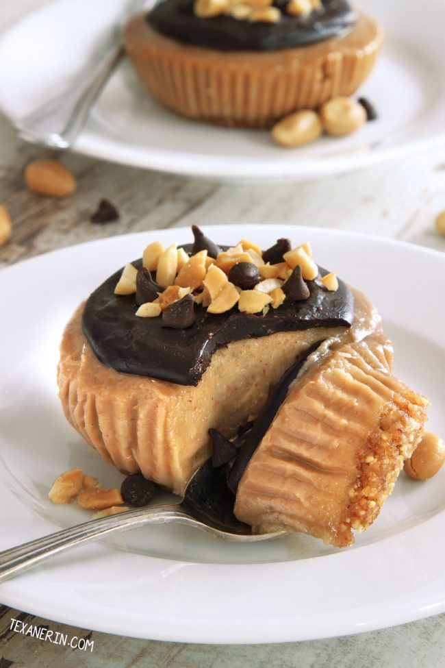Vegan No-bake Peanut Butter Pies with paleo option