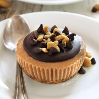 vegan-no-bake-mini-peanut-butter-pies-fi
