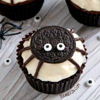 spider-cupcakes-3-fb