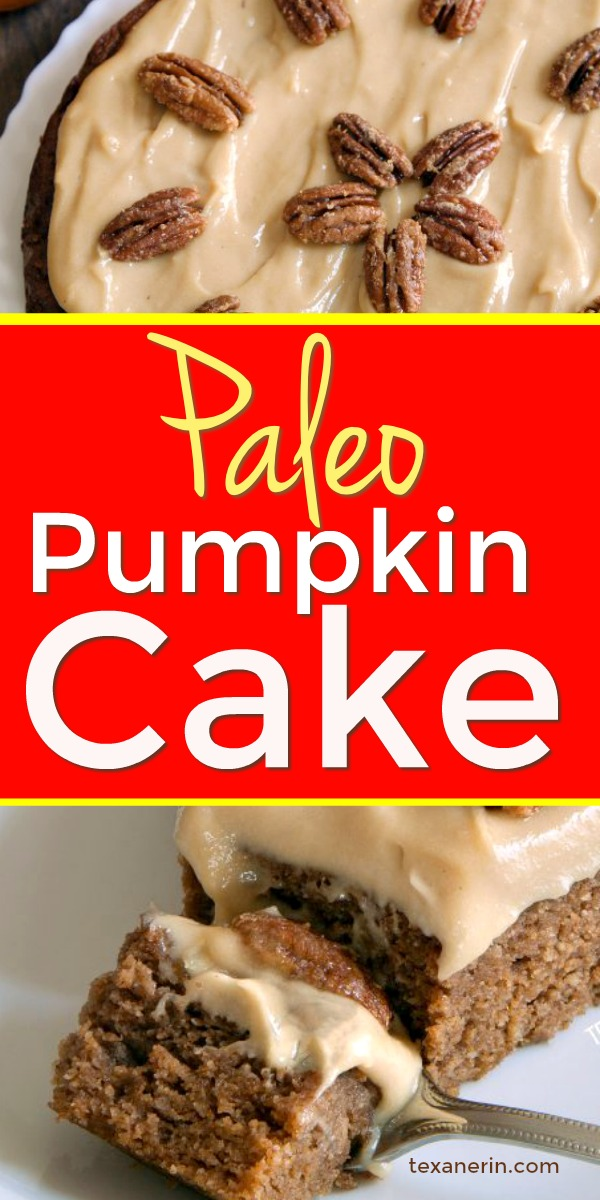 This paleo pumpkin cake is super moist and easy to make! Topped off with maple cream frosting and easy maple candied pecans.