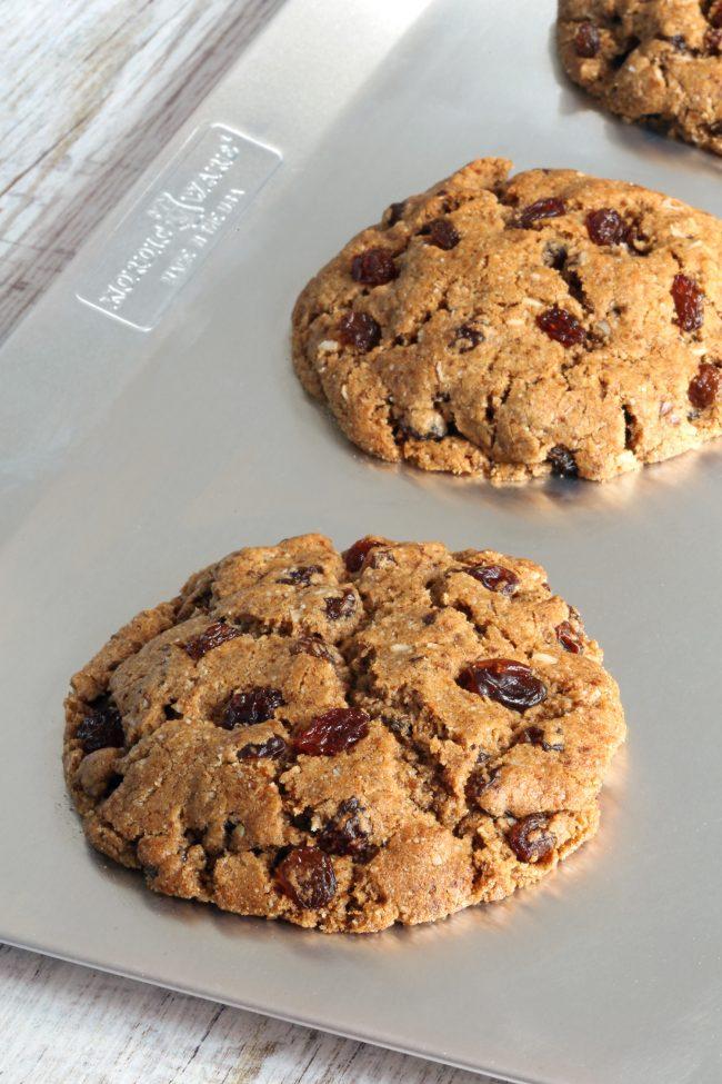 Paleo Vegan Oatmeal Cookies