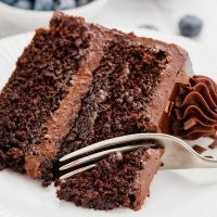 Slice of Dairy-free Chocolate Cake
